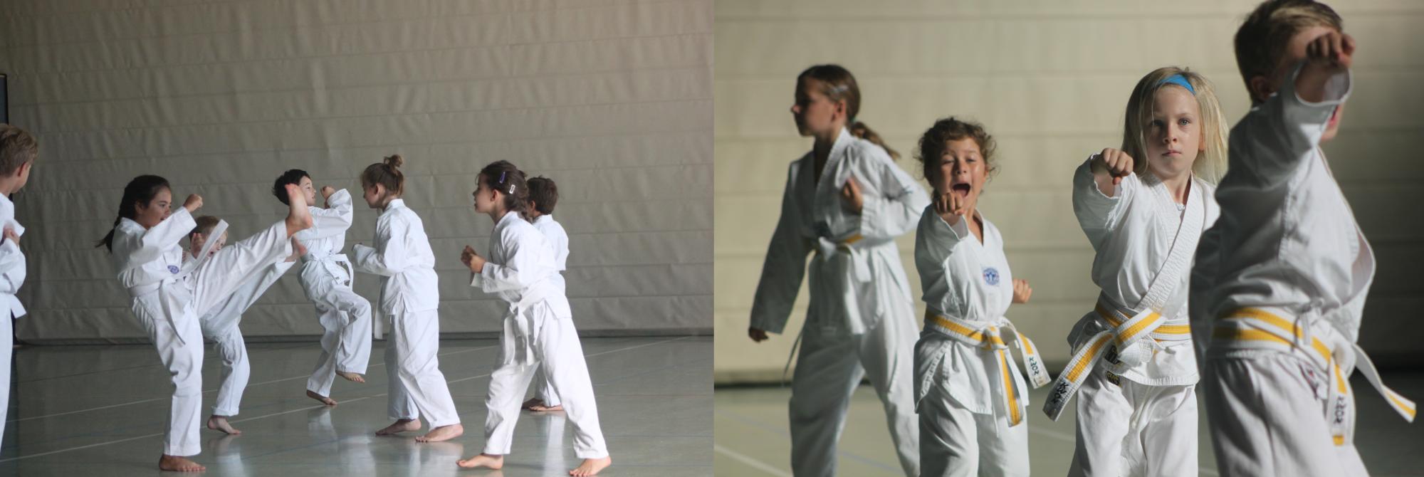 Klassisches Taekwondo Olching 0179-7693386
